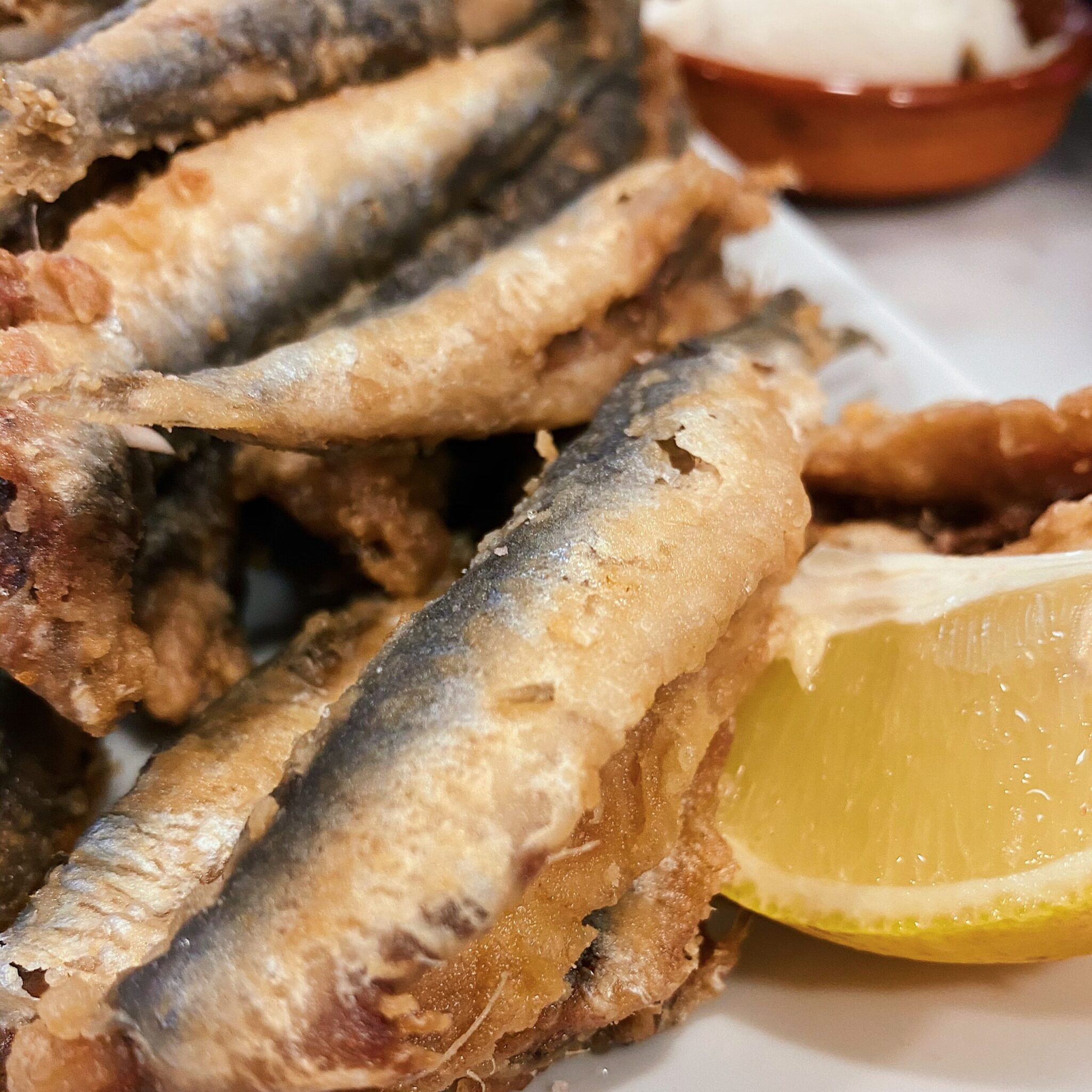 10 recomendaciones para comer bien en Granada
